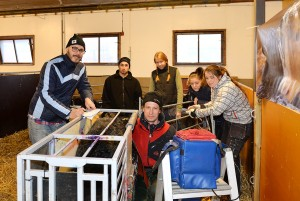 Ultraljud i fårhuset på Öknaskolan